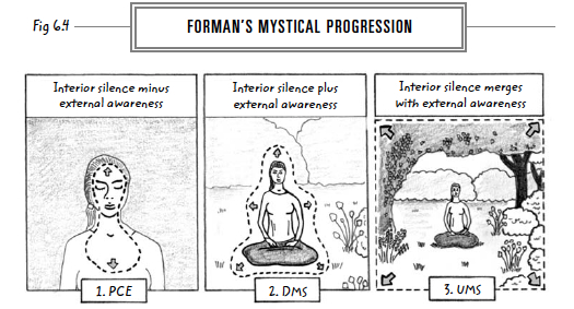 11-formans-mystical-progression-web
