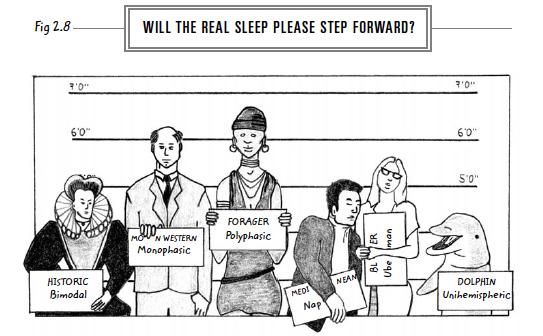 6-will-the-real-sleep-step-forward-web