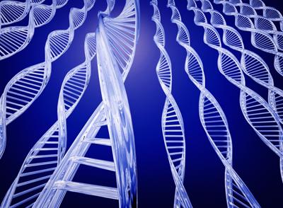 epigenetics-best-web