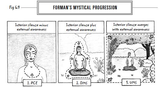 11-formans-mystical-progression-web