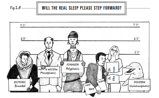 6-will-the-real-sleep-step-forward-web
